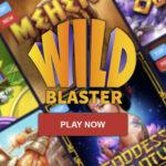 Wildblaster Review